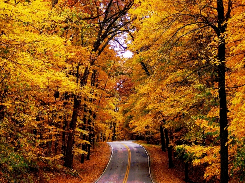 the-road-autumn-16517219-1280-960-1
